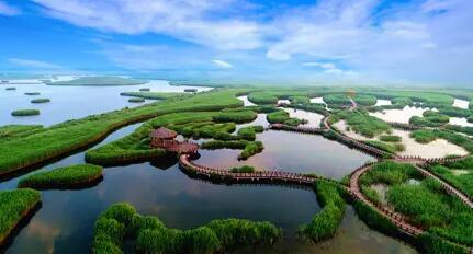 地球三大生态系统,这些是维护地球生态平衡的重要生态守护神