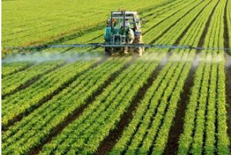 暴雨对河南农业及农产品价格影响多大?花生、玉米受灾面积合计超千万亩!