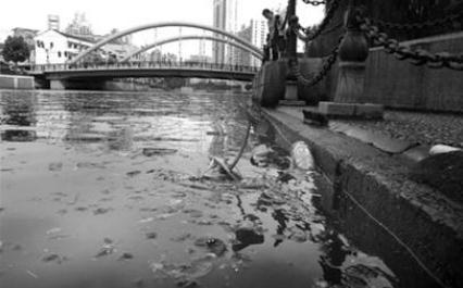 ?蘇州河污染嚴重的原因及治理現狀