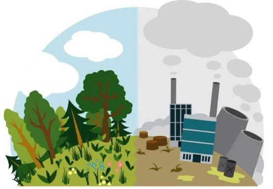 绿色制造体系建设取得显著成效,对工业碳达峰的贡献有待提升