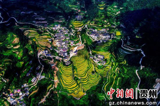 """贵州:以林为""""笔"""",绘就一幅多彩贵州绿之美画卷"""