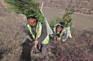 经过多年持续努力,陕西实现'人进沙退、绿锁沙丘'的治沙奇迹
