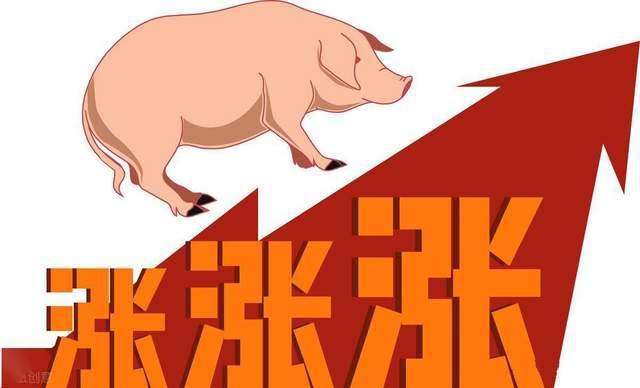 全国27省生猪数据出炉,养猪农户迎来发展利好