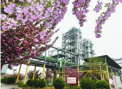 济南炼化五十年风采:对标世界一流,打造城市炼厂标杆