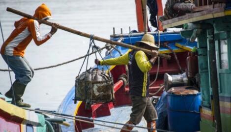 中國拒收1000個集裝箱的印度蝦,稱在外包裝上檢測到了新冠病毒核酸物質
