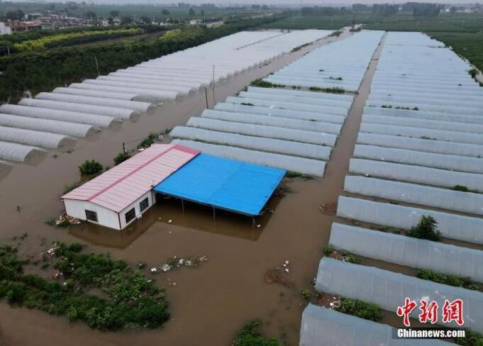 河南暴雨洪災過后糧食會漲價嗎?菜價短期上漲已回落
