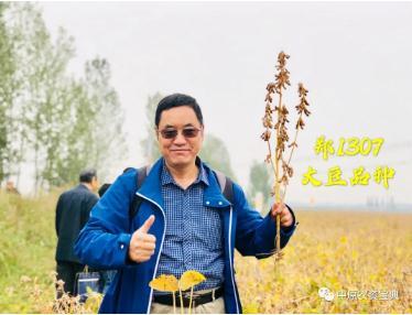 大豆哪个品种产量最高?赣豆10号亩产262.4公斤刷新纪录