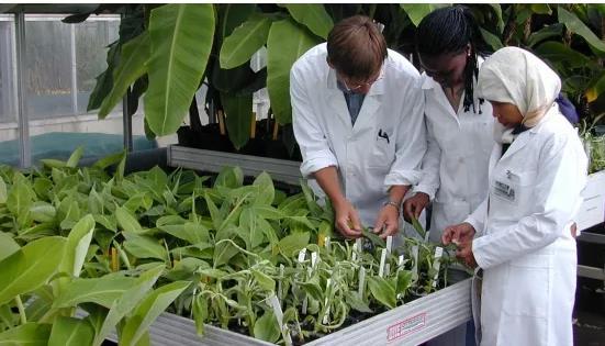 核科学有力促进农业的发展,核技术在农业领域大有作为