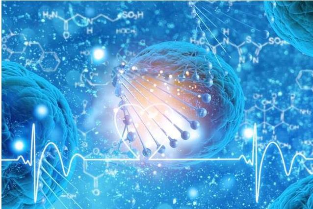 磁场消灭癌细胞,是一种新的抗癌方案吗?