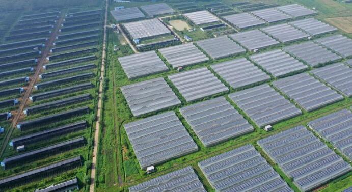 光伏板块从无到有成了世界第一,我国新能源还有哪些投资机会