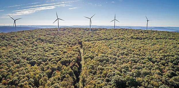 《麻省理工科技评论》:碳去除技术炒作正成为一种危险的干扰