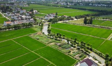 我国耕地面积变化及现状:十年减少1.13亿亩,18亿亩红线以上