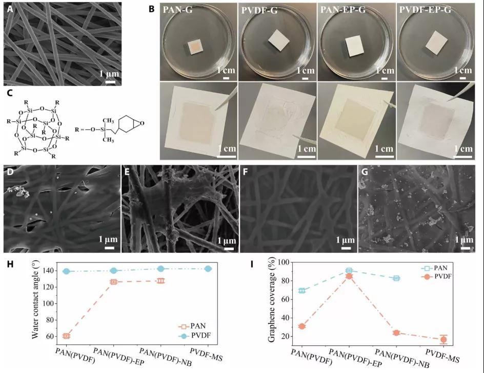 单层石墨烯溶剂纳滤膜,创造乙醇渗透率的最高记录