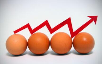 鸡蛋为何涨价这么厉害?9月中下旬蛋价或降温,整体偏弱