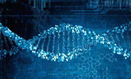 一文了解生物技术的伦理难题