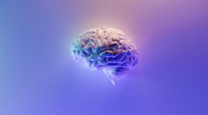 中国脑计划项目正式启动,脑科学领域还能实现哪些技术突破
