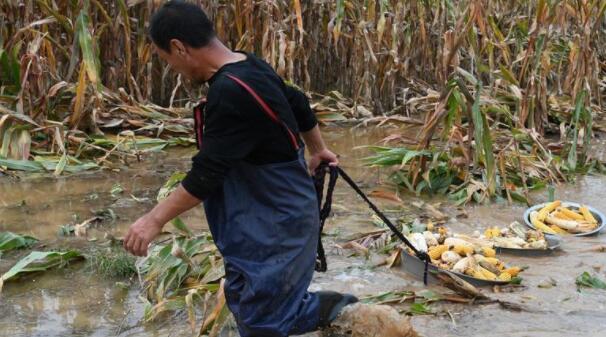 山西强降雨致15人死亡,直接经济损失50.29亿元
