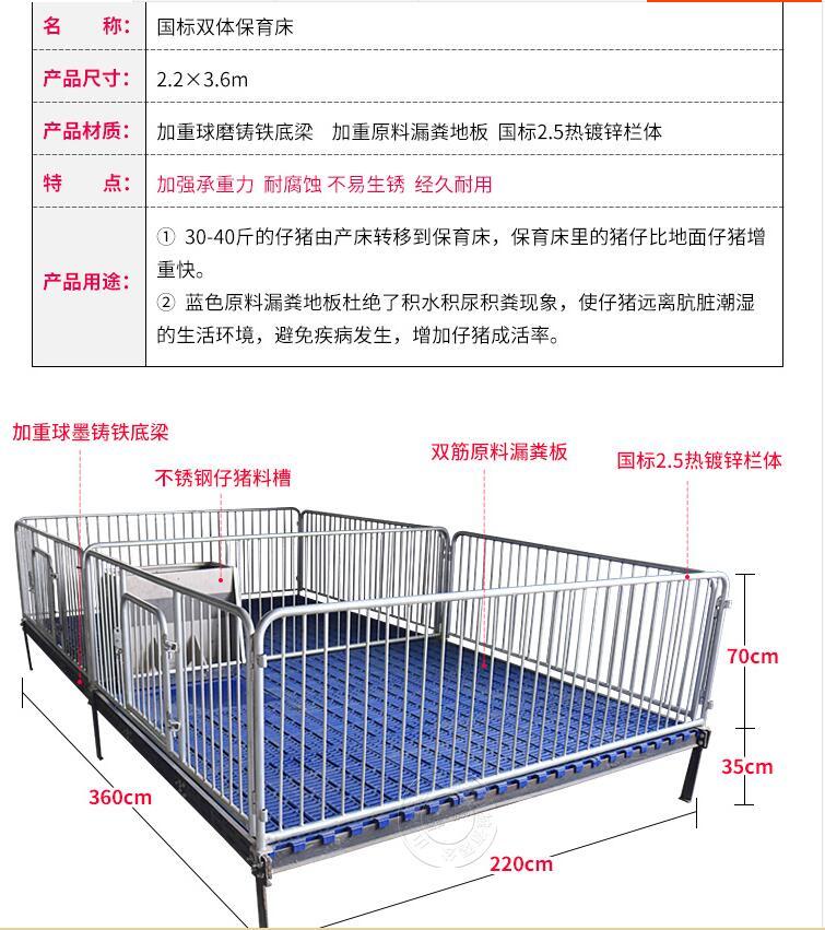 小豬保育床尺寸山東佰牧興仔豬保育床雙體保育床廠家直銷