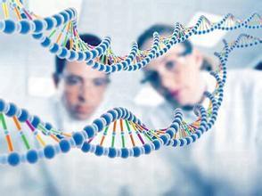 分子生物学技术服务