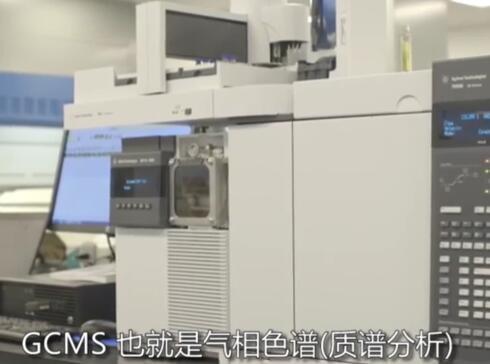 气相色谱/质谱分析 (GC/MS)用于精油检测