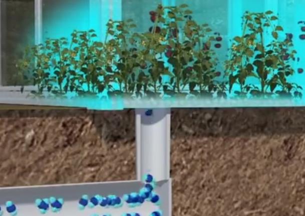 为吸收二氧化碳, 这个国家建造最大空气过滤器