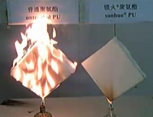 阻燃剂实验演示