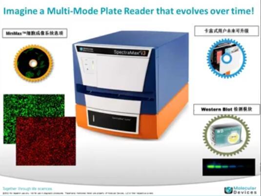 如何使用MD酶标仪进行ELISA检测及SMP软件设置