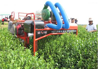 江苏云马农机合作研发的国内首台全自动高地隙采茶机试验成功