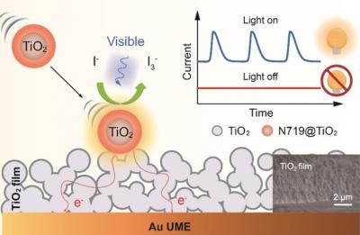 华理田禾院士在单颗粒光电化学研究领域取得突破性进展