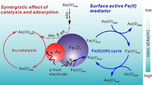 智能所重金属离子的电化学分析检测技术取得进展