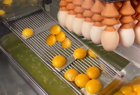食品加工机械黑科技 脑洞太不一般