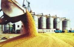 六部门发布《小麦和稻谷最低收购价执行预案》