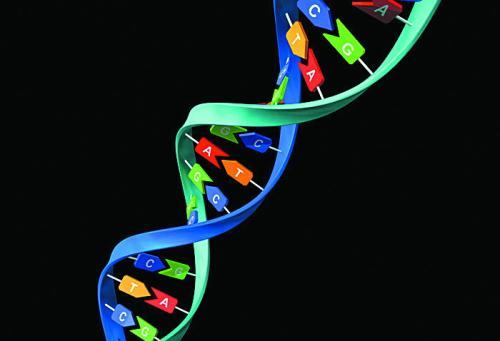 农作物基因组学研究的重要进展
