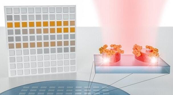 新型分子识别传感器系统诞生