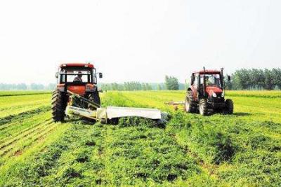 """农业机械化和现代化建设正改写""""三夏节奏"""""""