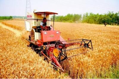全国大规模小麦跨区机收结束 机收率创历史新高