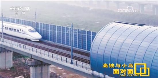 """江湛铁路增加两公里全封闭声屏障 守护""""小鸟天堂"""""""