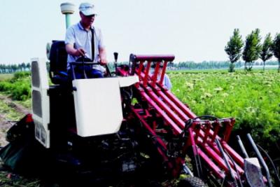 青农大研制自走式双行胡萝卜联合收获机样机试验成功率达98.2%