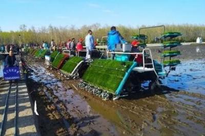 湖南省研发并首推的水稻机插秧同步侧深施肥技术入选全国2018年十项重大引领性农业技术