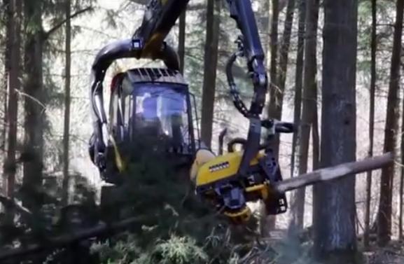 """世界上最霸气的森林机械, 拔起大树一口""""咬""""成木棍"""