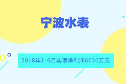 宁波水表2018年半年报:净利润6030万 同比增长14%