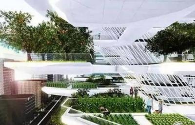 垂直农业或将拯救中国全人类粮食问题