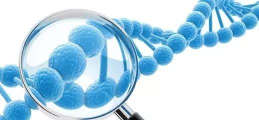 盘点国内5家基因疗法初创公司