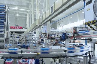 阳江市维达生活用纸项目试产 首批次生产线年产值达10亿