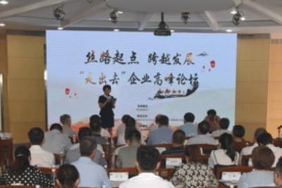 """陕建机股份:""""走出去""""企业高峰论坛召开"""