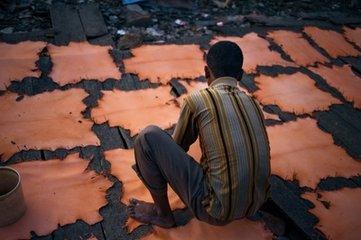 孟加拉制革业否认原料皮价格大幅下跌