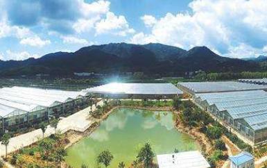 中天科技制造出全国首创十万千瓦级别储能电站
