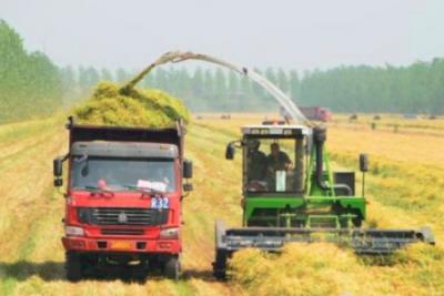 农机行业回归正常积极发展轨道仍需时日