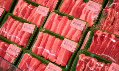 辽宁省紧急加强非洲猪瘟防控工作