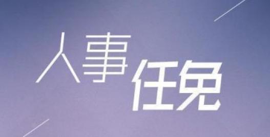 人事变动!华数传媒聘任张晨为董事会秘书